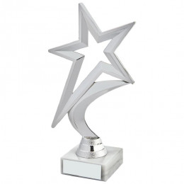 Silver Shooting Star Holder Award