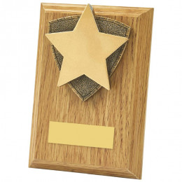 Light Oak Star Wood Plaque Award