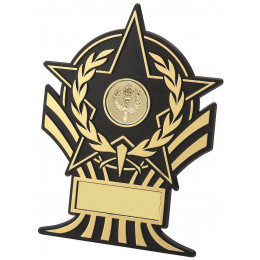 Plastic Star Award
