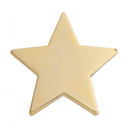 Star Enamel Gold Badge