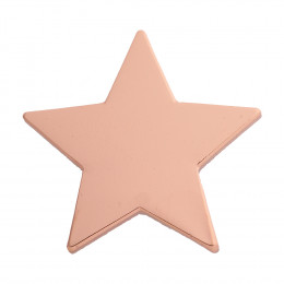 Star Enamel Bronze Badge