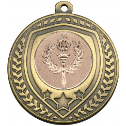 Bronze Shield Medal
