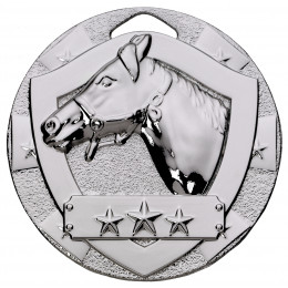 Silver Equestrian Mini Shield Medal
