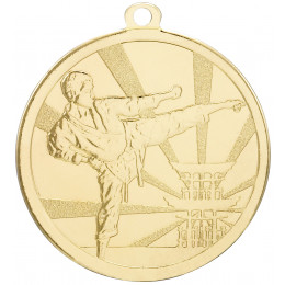 Martial Arts Gold Medal