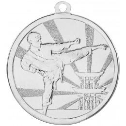 Martial Arts Silver Medal