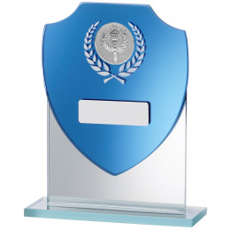 Blue Shield Mirror Glass Award
