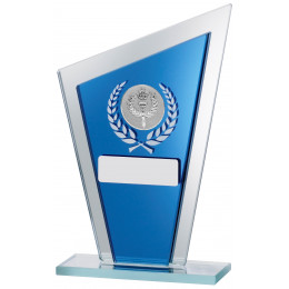 Blue Mirror Glass Award
