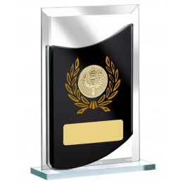 Mirrrored Glass Rectangular Award