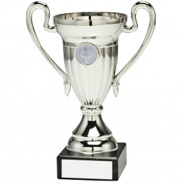 Plastic Lined Cup Trophy