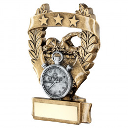 Bronze & Pewter Swimming 3 Star Wreath Award Trophy