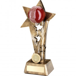Cricket Twisted Star Column Trophy
