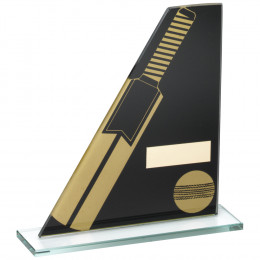 Printed Glass Plaque With Cricket Bat & Ball Trophy