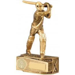 Cricket Batsman Award