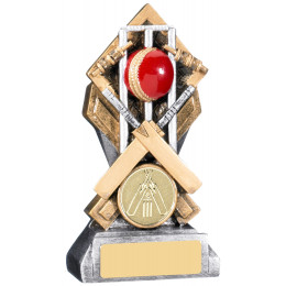 Diamond Extreme Cricket Award