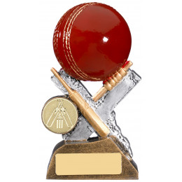 Extreme Cricket Award