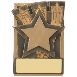 Mini Magnetic Star Award