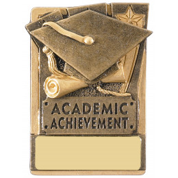 Mini Magnetic Academic Award