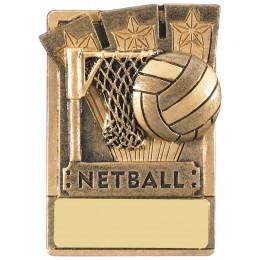 Mini Magnetic Netball Award