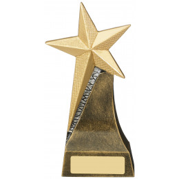 Gold Star Achievement Award