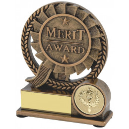 Resin Merit Award
