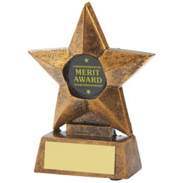 "4"" Resin Mini Star Award"