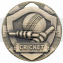 Cricket Mini Shield Medal