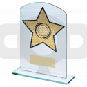 Jade & Gold Glass Arched Rectangle With Athletics Insert Trophy