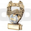 Bronze & Pewter Volleyball 3 Star Wreath Award Trophy