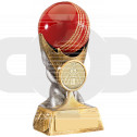Cricket Ball Award