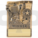 Mini Magnetic Winner Award