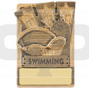 Mini Magnetic Swimming Award