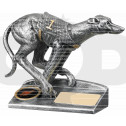 Greyhound Award