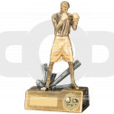 Boxer Male Award